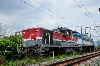 DSC_6253.JPG